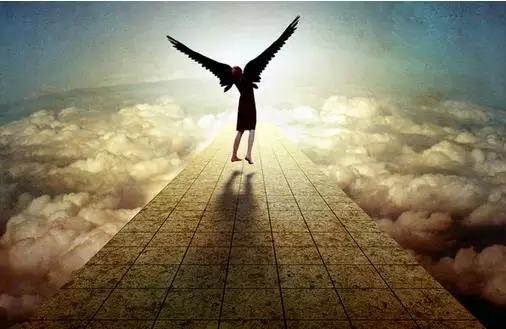 「正能量」勵志故事:努力,才是人生應有的態度