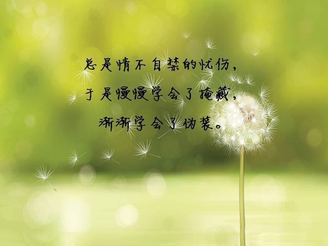 八個句子,人生感悟總有一句會觸動你的心靈